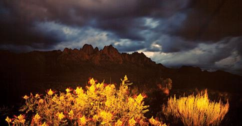 Timeless Moment Organ Mountains
